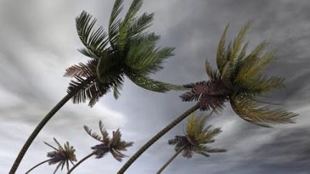 sezonul uraganelor in florida